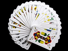 See our Play Hearts Card Game 23